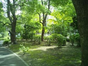 2014aug5_006